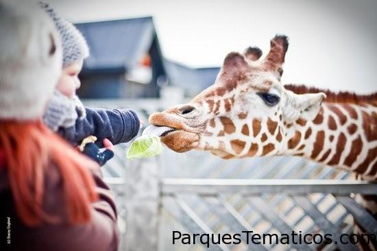 Los 25 zoológicos más populares del mundo