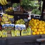 Frutas para los que desean opciones de comida sana