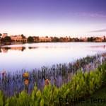 Lago Dorado, un lago artificial de 22 acres, se encuentra en el centro de Disney's Coronado Springs Resort, y les ofrece a sus Huéspedes muchas oportunidades para divertirse en el agua, desde paseos en bote hasta excursiones de pesca. Vista desde el otro lado del lago de Disney's Coronado Springs Resort en la mañana