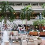 Buscando el puesto de Disney's Magical Express en el aeropuerto de Orlando, MCO