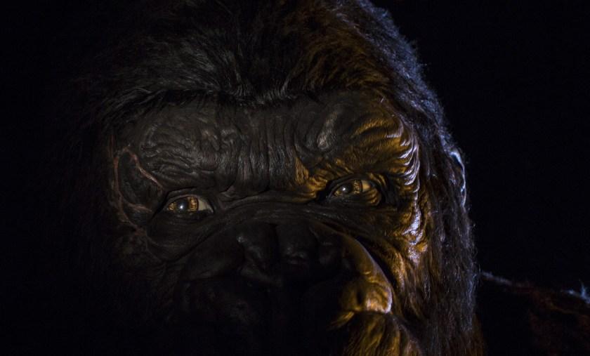 Foto de primer plano de King Kong en Universal Orlando