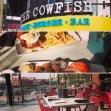 @thecowfishsbb Una de las mejores opciones para comer desde Sushi hasta las mejores Hamburguesas en @citywalkorlando