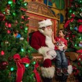 """""""Infaltables"""" para Disfrutar esta Temporada Navideña en Walt Disney World Resort"""