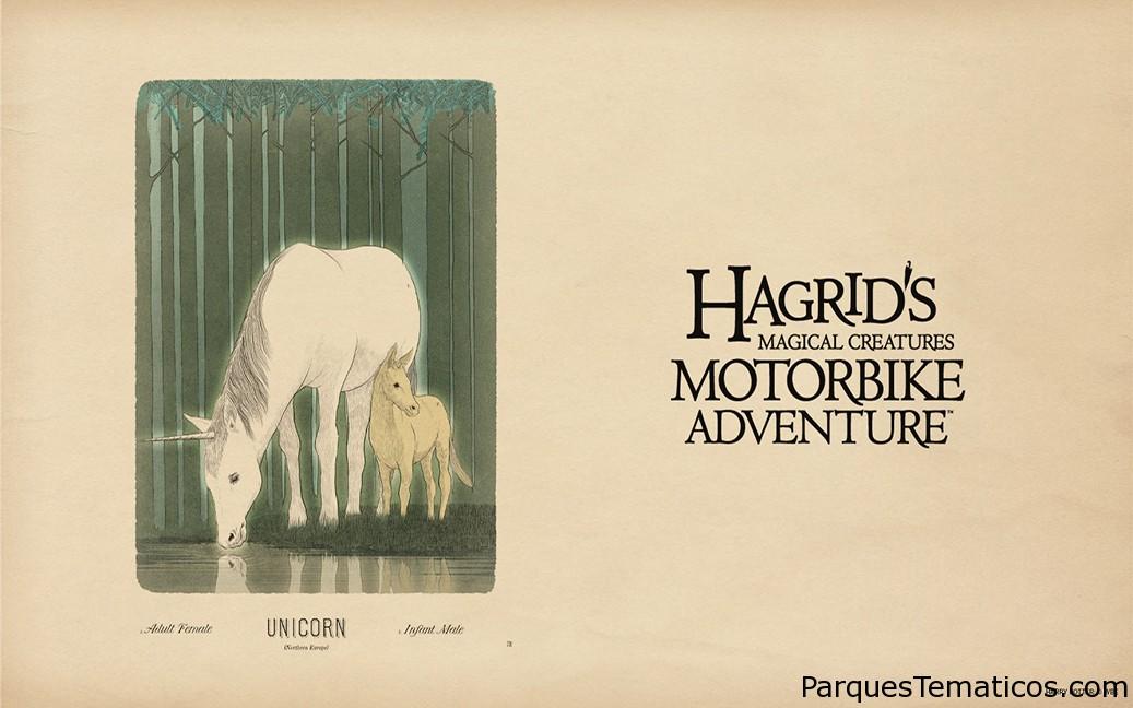 Los fondos de pantalla de Hagrid's Magical Creatures Motorbike Adventure ya están disponibles para descargar