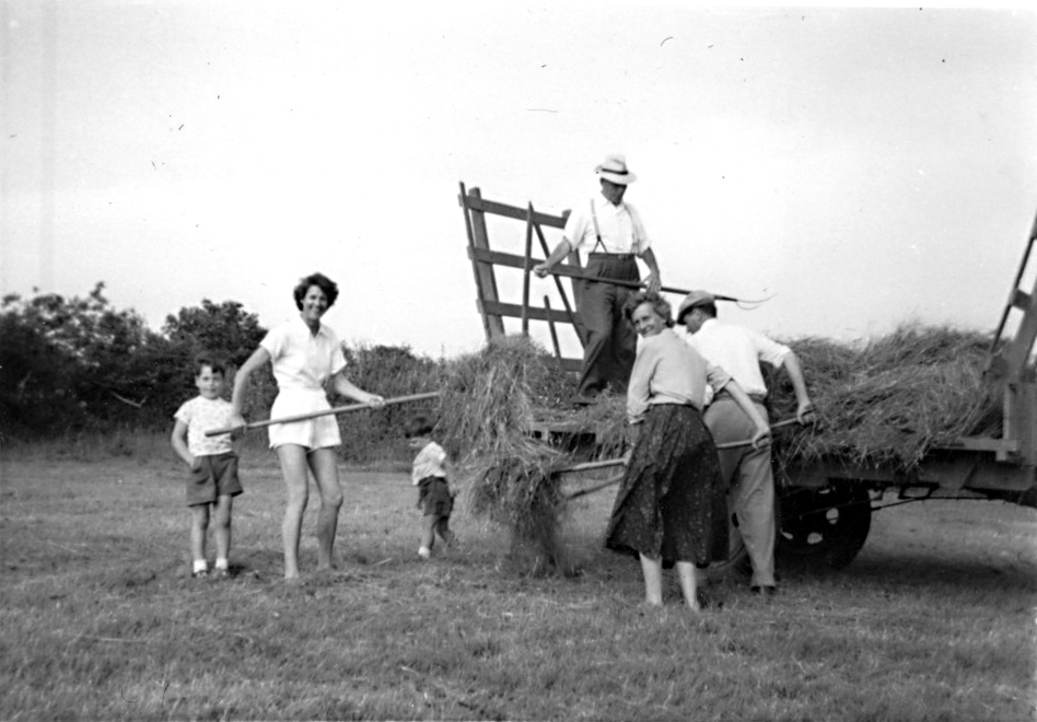 Hay cart being loaded 1959 - kind permission of Emma Tucker