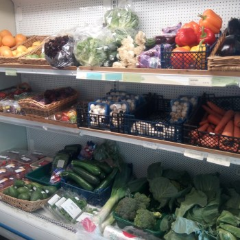 GREEN- GROCER