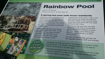 The Rainbow Pool - lots of trout
