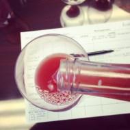 Grenache Rose First Taste