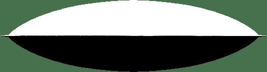 Questa immagine ha l'attributo alt vuoto; il nome del file è separator.png