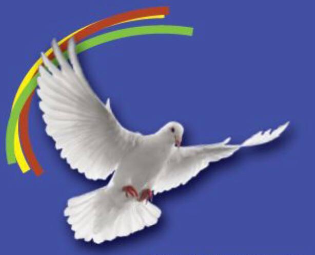 Seminario de Vida Nueva en el Espíritu Santo