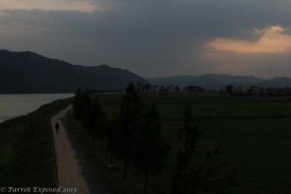 Lone sunset walker