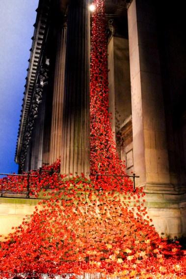 River of poppies WW1 centenary