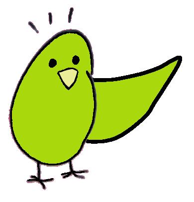 natural bird toys