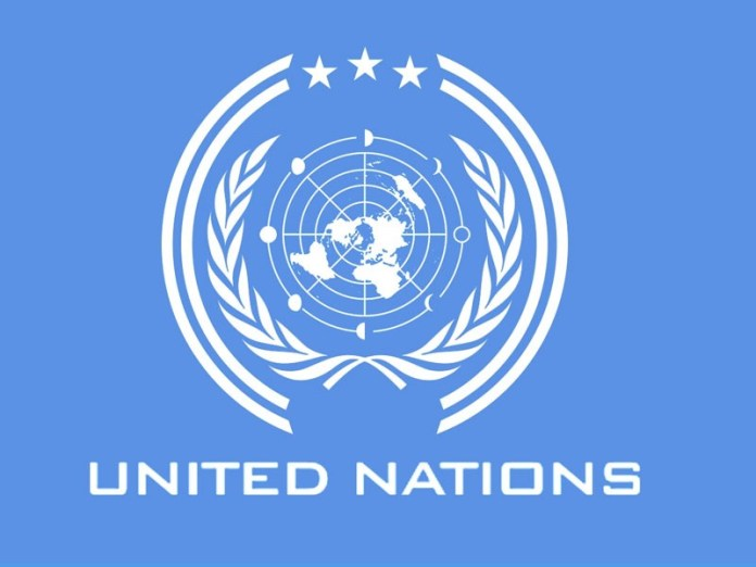 UN to Announce New State Carved out of Nigeria, Cameroon July 10