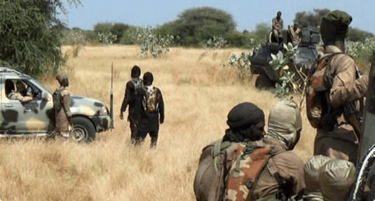 ISWAP holds '100 villagers' in Borno as human shield to stop military air strikes
