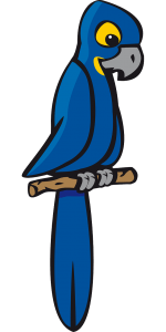 Hyacinth macaw vector image
