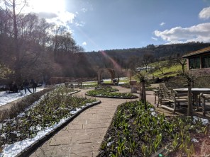The beautiful grounds of the ASHA Centre