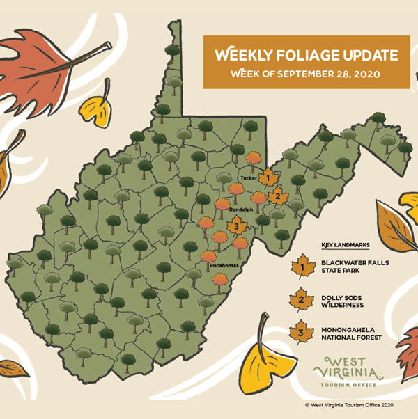 West Virginia Tourism Office Releases First Fall Foliage Report