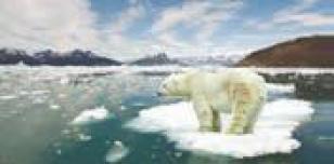 تاثیر افزایش کربن دی اکسید بر دمای زمین