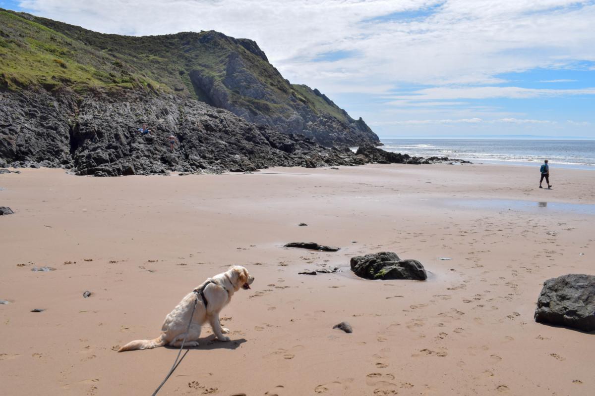 Dog-friendly Pobbles Beach Gower Wales