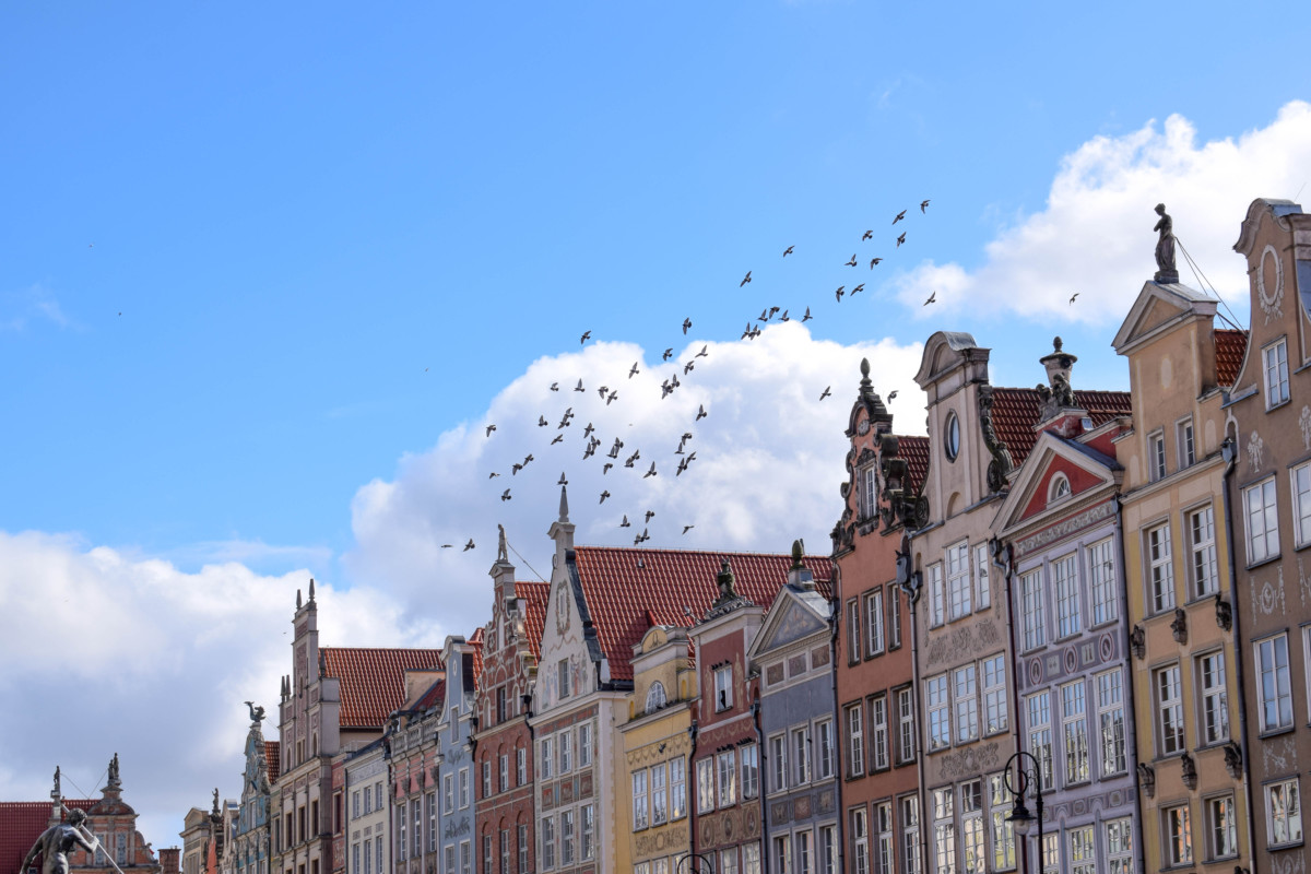 Birds flying over Old Town in Gdansk Poland