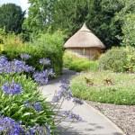 Bristol Botanic Garden Bristol walks