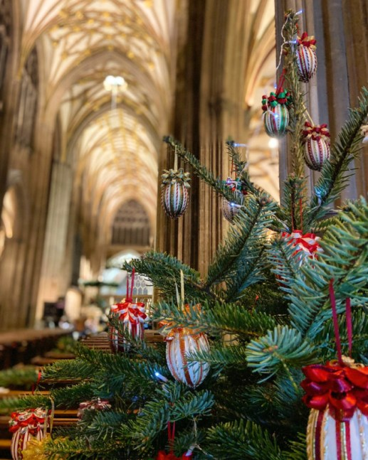 Treefest St Mary Redcliffe bristol