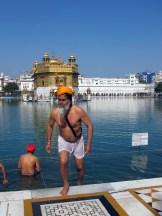 Un pellegrino sikh dopo il bagno rituale nel Tempio d'Oro di Amritsar, nel Punjab indiano. Il Tempio d'Oro  il luogo pi sacro per la religione Sikh. ANSA/Nello Del Gatto