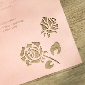 1.1_Partecipazione Piatta Rosa-particolare