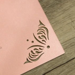 2.1_Partecipazione Piatta Rosa-particolare