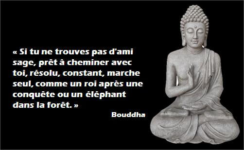 buddha_citations_Motivation_6