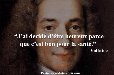 Voltaire Top 25 Citations Motivation