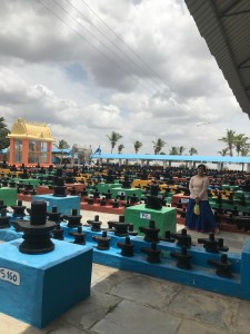 Open Field with Lakhs of Shiva Lingas