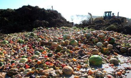 Cada día una persona muere por hambre en Jalisco