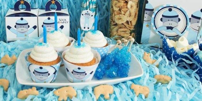 Blue Sock Monkey Party Theme