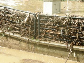 A closeup of the water level and debris piled into the fence at the headgate of the city ditch. The creek essentially built its own levee, preventing itself from flowing into the canal this far uphill.