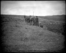 Farming in Routt County, early 20th century. Farming in Colorado depends on the diversion of water, often far away from stream banks. Image courtesy Denver Public Library Western history & Genealogy Dept.