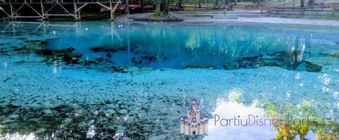 Голубая весна государственный парк