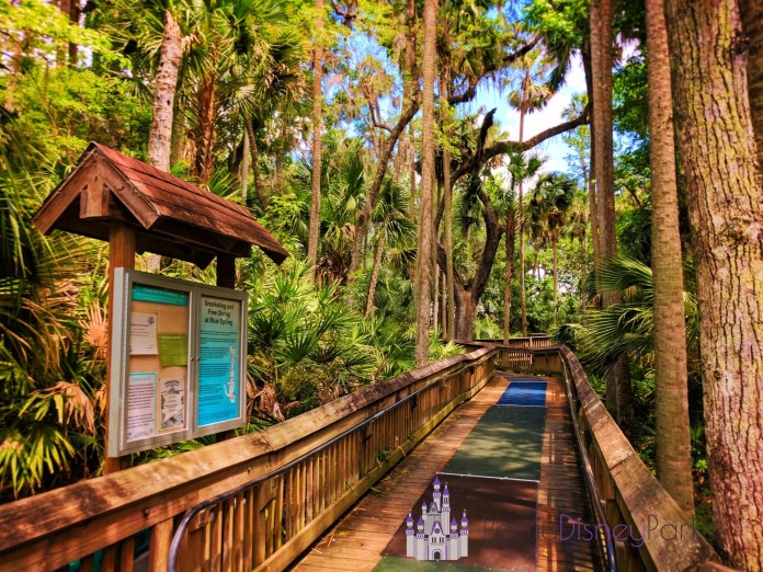 Boardwalk-hiking-at-Blue-Springs-State-Park