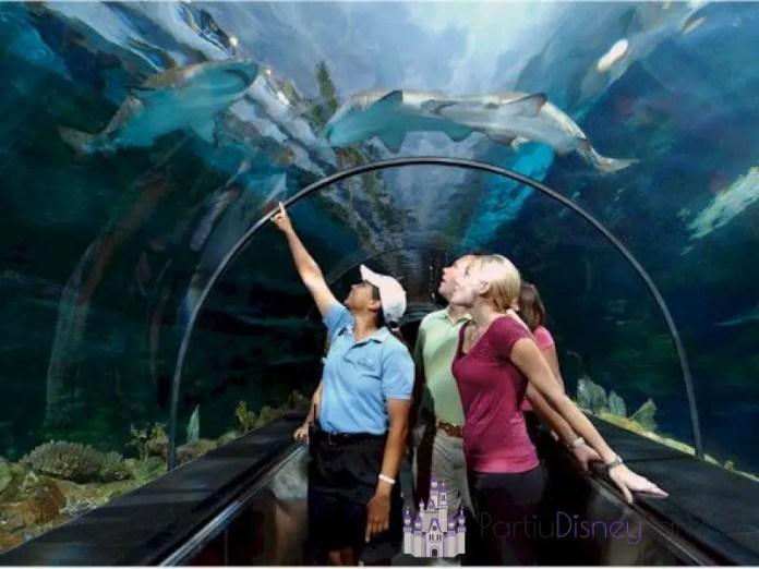 SeaWorld-Private VIP Tour
