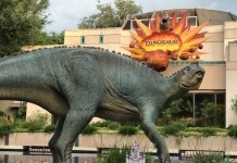 dinosaur-animal-kingdom
