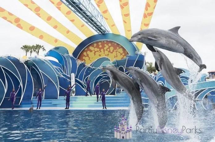 Dolphins-days-seaworld