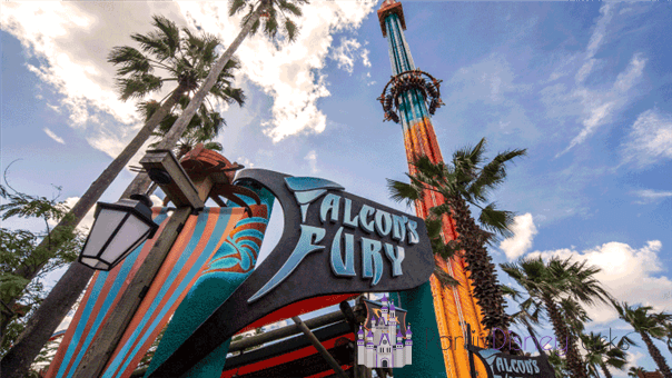 O Falcon's Fury fica no Busch Gardens e é um elevador com uma queda especial