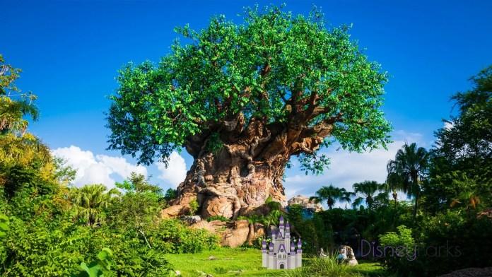 tree-life-animal-kingdom-zoom-background