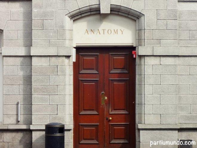 C Trinity College 6