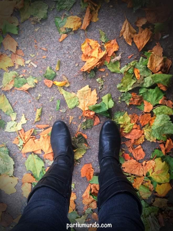 outono na irlanda