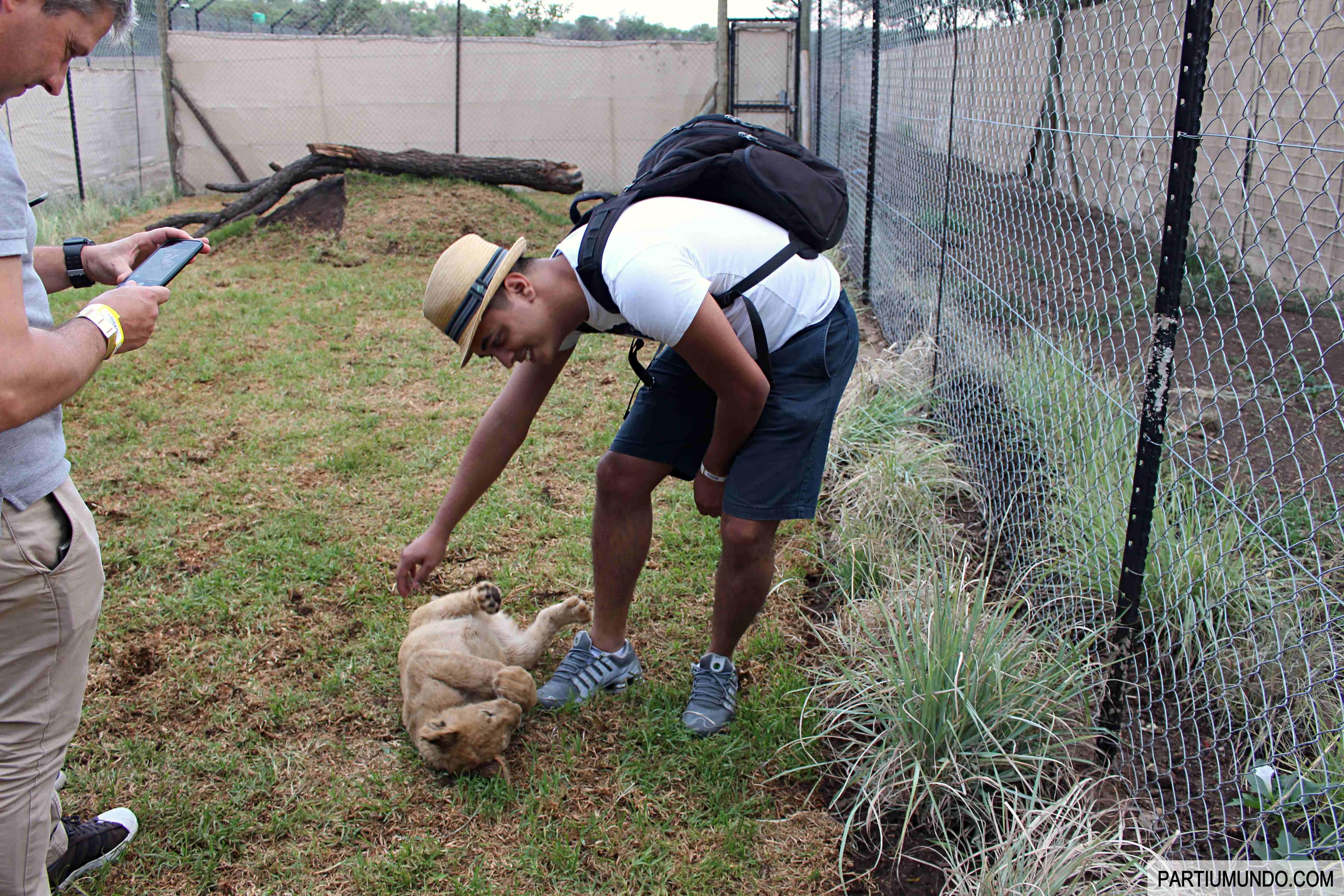 Lion and Safari Park 28