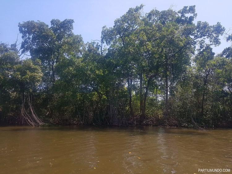 rio preguiças boat tour