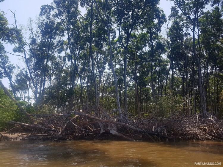 rio preguiças 5