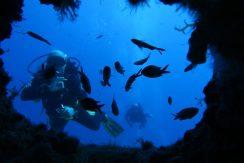 mergulho em malta 11